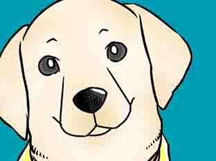 ตอนที่ 46 : แพทย์หญิงและผู้ใช้สุนัขดูแลผู้พิการ