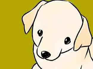 ตอนที่ 48 : ติตี้สุนัขดูแลผู้พิการ ตอนที่ 2